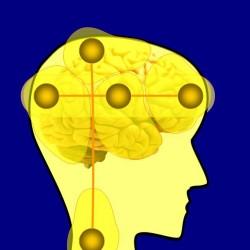 Общая Теория Сознания Человека